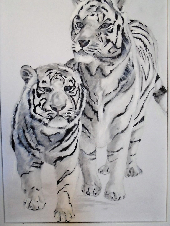 White Lions (3)