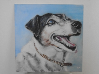 Jack Russell oil on canvas board
