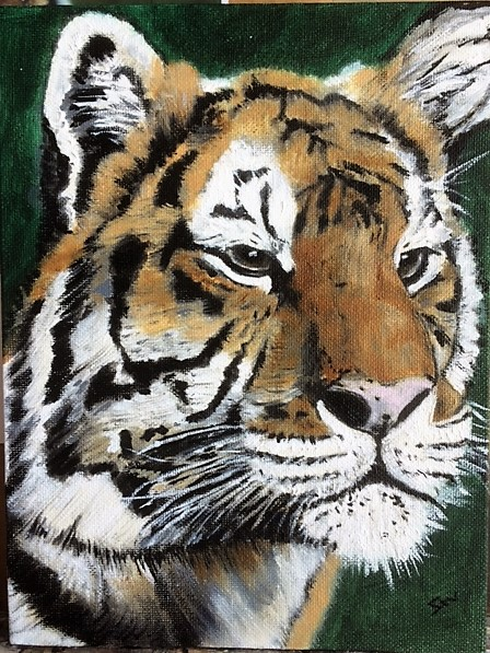 August Tiger cropped