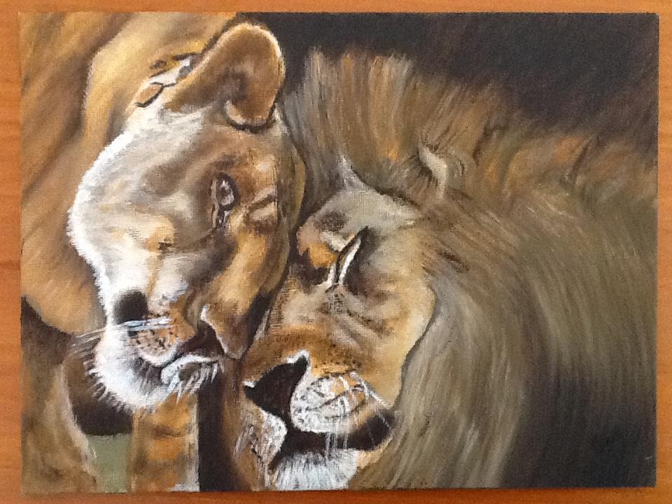 Loving lions Nov 18