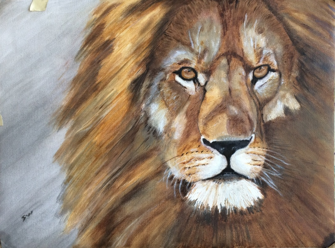 Lion June 2019