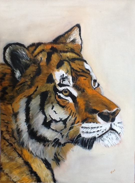Tiger on loose canvas
